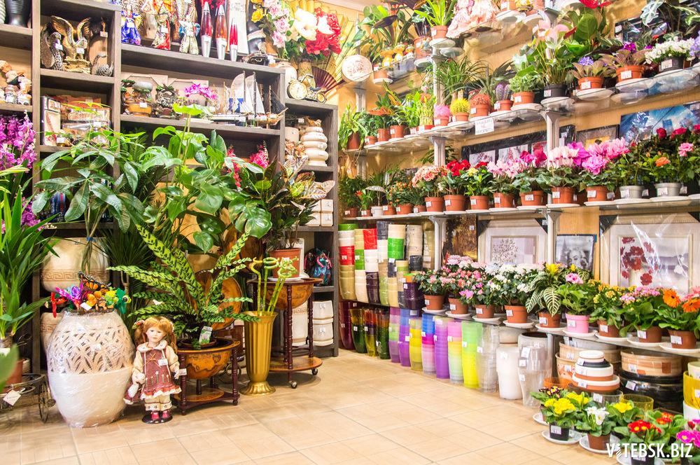 Картинки садовый магазин