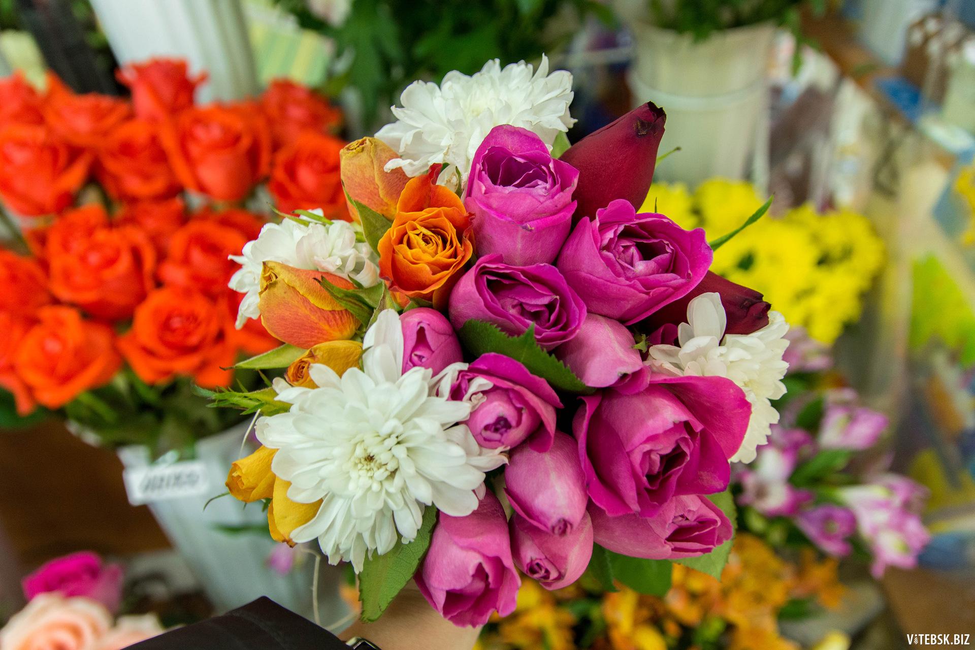 Доставка цветов витебск круглосуточно комнатные живые цветы в нальчике
