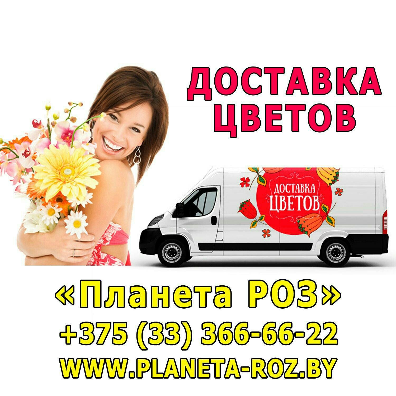 Заказ и доставка цветов челны круглосуточная, розами букет невесты