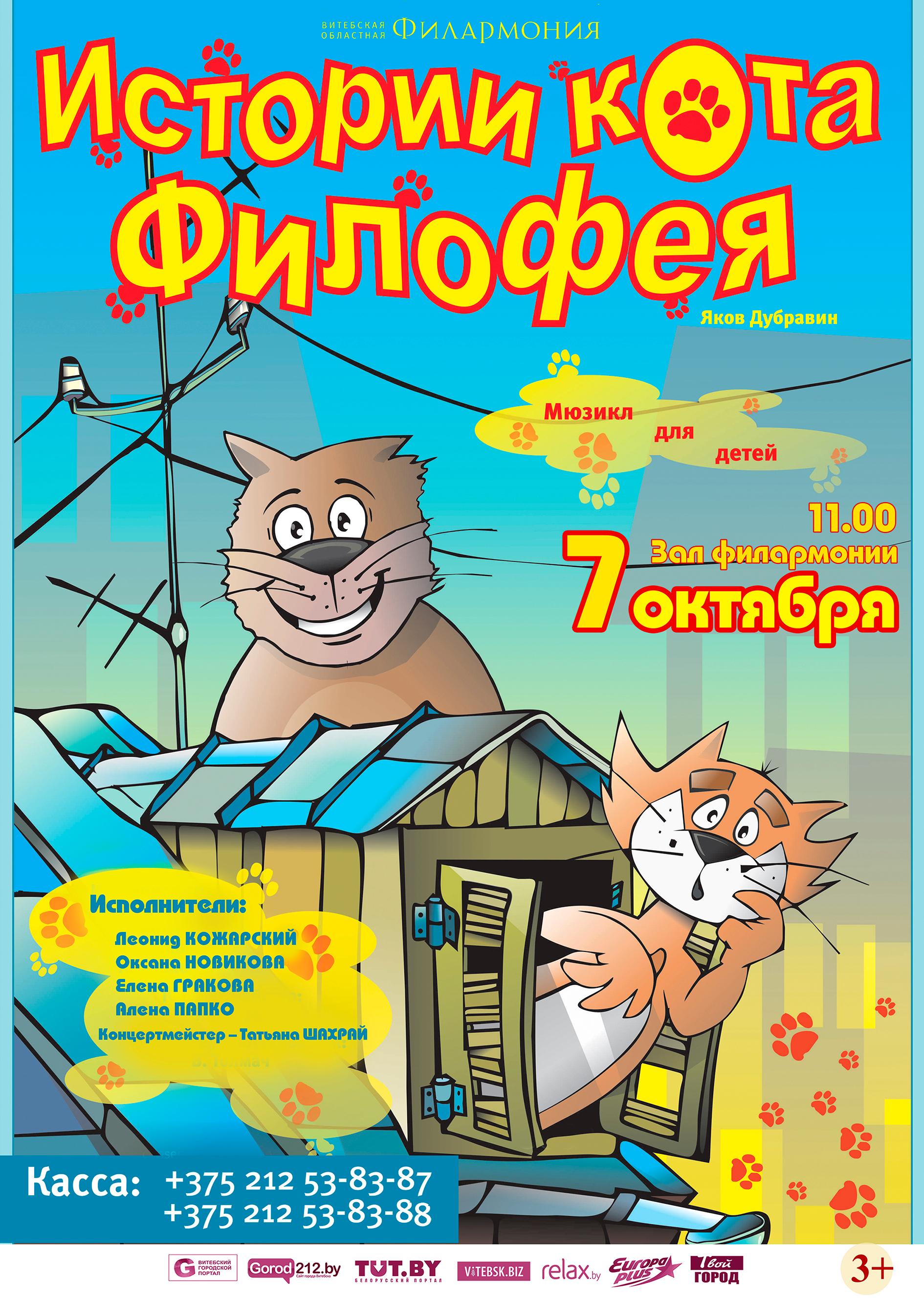 Кота филофей
